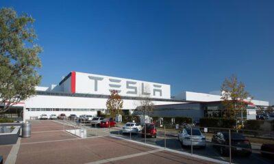 Tesla dice que los beneficios de desempleo de los trabajadores podrían verse afectados si eligen no regresar al trabajo