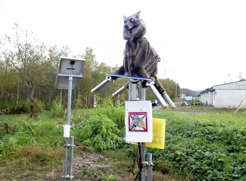 Ciudad japonesa despliega robots 'Monster Wolf' para disuadir a los osos salvajes