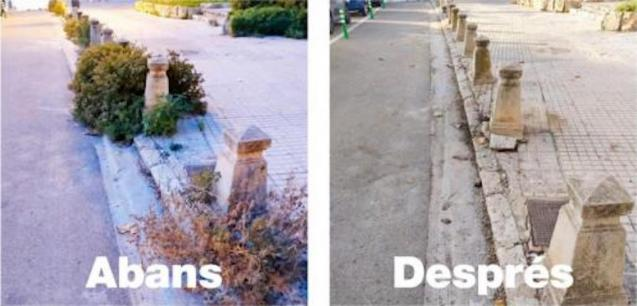Before & After weeds in Palma.