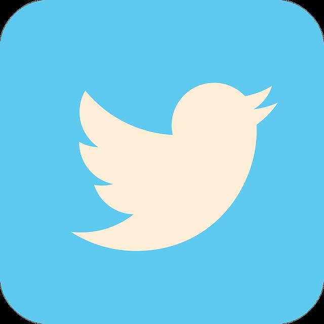 Cómo silenciar flotas en Twitter
