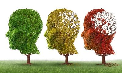 El análisis de sangre puede predecir con precisión el Alzheimer: estudio