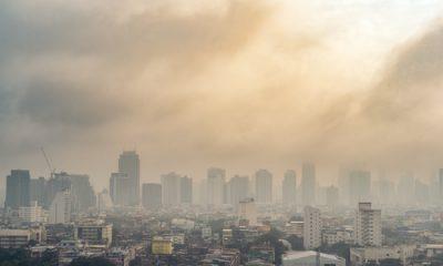 Investigación para investigar el papel de la contaminación del aire en la muerte de una niña británica