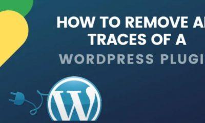 Cómo eliminar todos los rastros de un complemento de WordPress