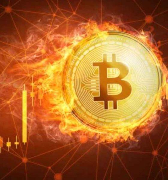 250 mil millones desaparecieron del mercado de criptomonedas cuando bitcoin perdió el 25% de su valor; se bloquea de cerca de $ 42,000 a $ 32,576 en solo 24 horas