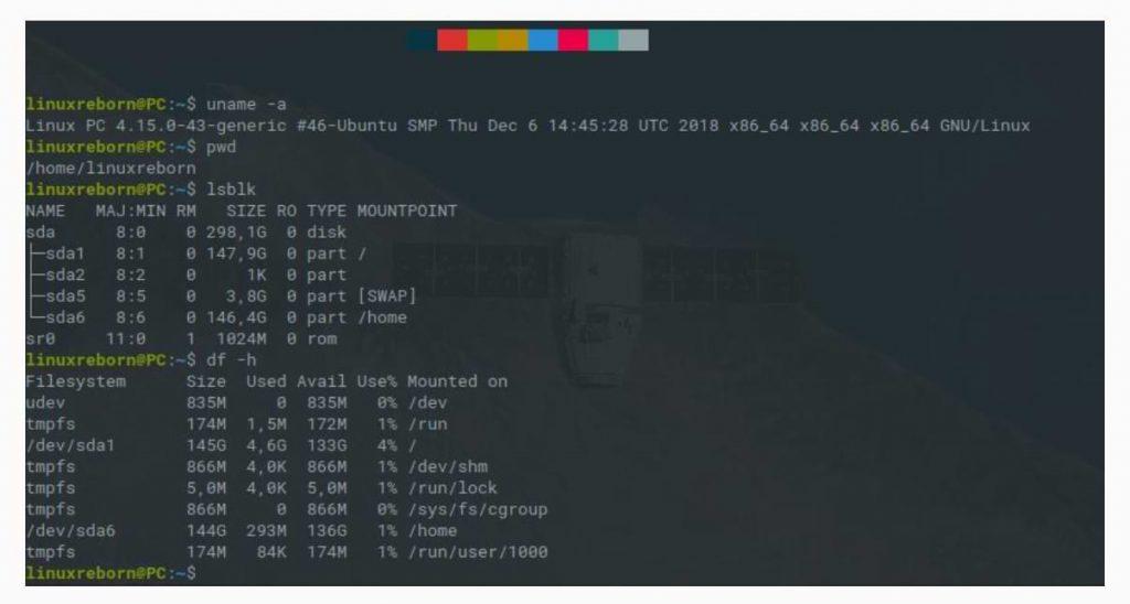 Aprende los comandos de Linux para principiantes para avanzar.