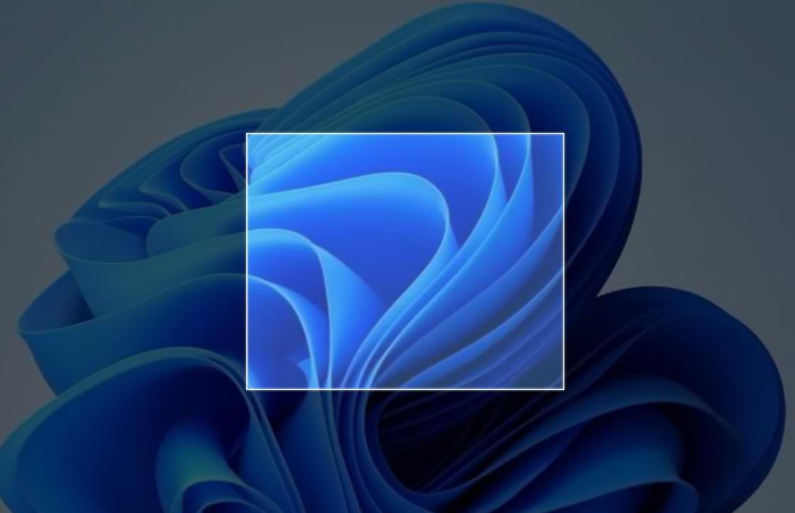 Cómo tomar una captura de pantalla en Windows 11