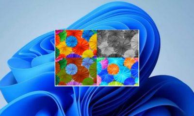 Cómo usar filtros de color en Windows 11