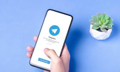 Cómo encontrar y administrar las pegatinas de Telegram en iPhone y Android